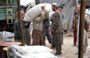 Casual labour in Badakhshan. Cash work, rather than income from agriculture, is key for many families in rural areas, but work is scarce. (Adam Pain 2011)